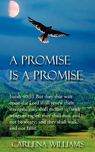 9781425908768: A Promise is a Promise