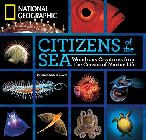 9781426206436: Citizens of the Sea: Wondrous Creatures from the Census of Marine Life