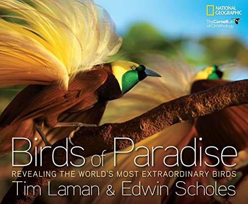9781426209581: Birds of Paradise: Revealing the World's Most Extraordinary Birds