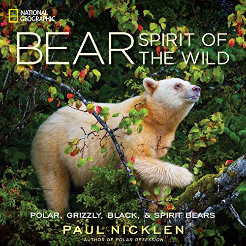 Bear: Spirit of the Wild (Hardcover): Paul Nicklen