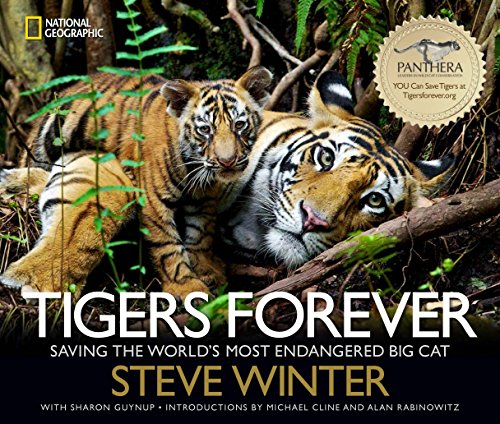 9781426212406: Tigers Forever: Saving the World's Most Endangered Big Cat