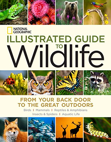 National Geographic Illustrated Guide to Wildlife: From Your Back Door to the Great Outdoors (...