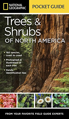 9781426214752: National Geographic Pocket Guide to Trees and Shrubs of North America