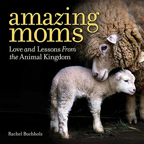Amazing Moms: Love and Lessons From the Animal Kingdom (Hardback)