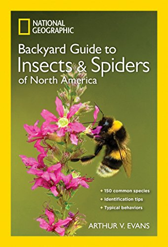 9781426217821: National Geographic Backyard Guide to Insects and Spiders of North America