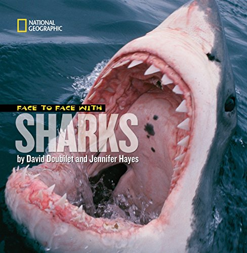 Face to Face With Sharks (Face to: David Doubilet, Jennifer
