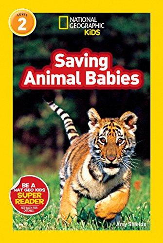 National Geographic Readers: Saving Animal Babies: Shields, Amy