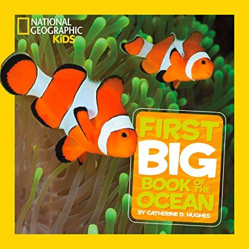 9781426313684: Little Kids First Big Book Of The Ocean