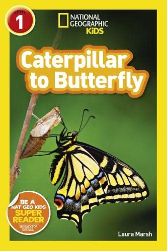 9781426315787: Caterpillar to Butterfly (National Geographic Readers)