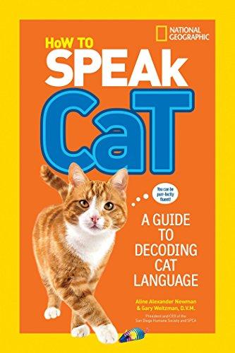 body language and emotion of cats milani myrna