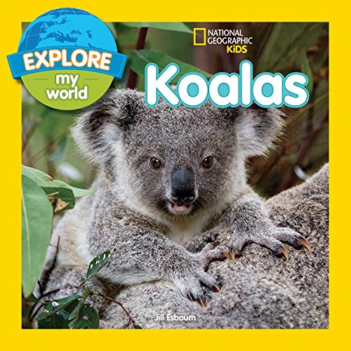 Explore My World Koalas: Esbaum, Jill