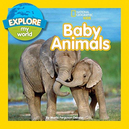 9781426320460: Explore My World Baby Animals