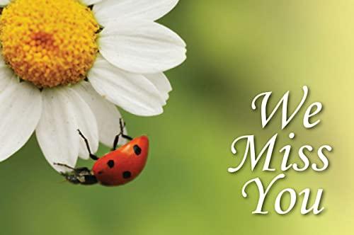 We Miss You Ladybug Postcard (Pkg of 25): Abingdon Press