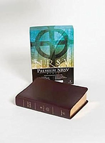 NRSV Bible: Burgundy: Abingdon Press