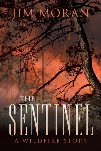 The Sentinel: A Wildfire Story: Moran, Jim