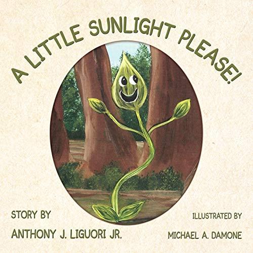 A Little Sunlight Please: Anthony J. Liguori Jr.