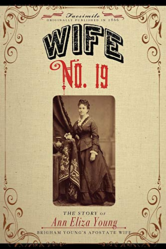 9781429020664: Wife No. 19: Or, the story of a life in bondage..