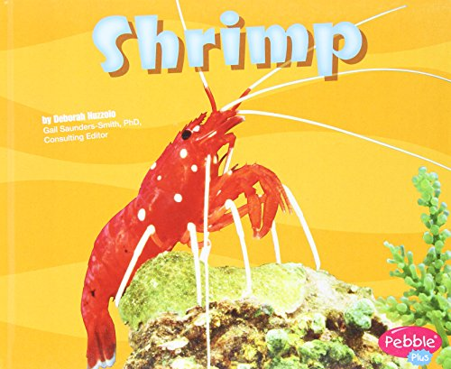 9781429600354: Shrimp (Under the Sea)