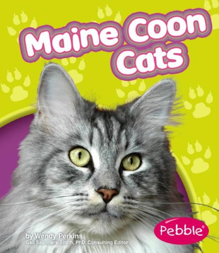 9781429612166: Maine Coon Cats
