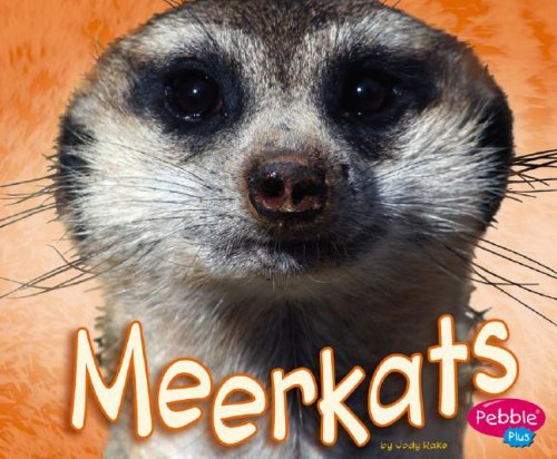 Meerkats (African Animals): Jody S. Rake