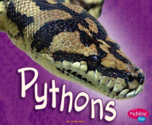 9781429612500: Pythons (African Animals)