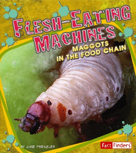 9781429612630: Flesh-Eating Machines: Maggots in the Food Chain (Extreme Life)