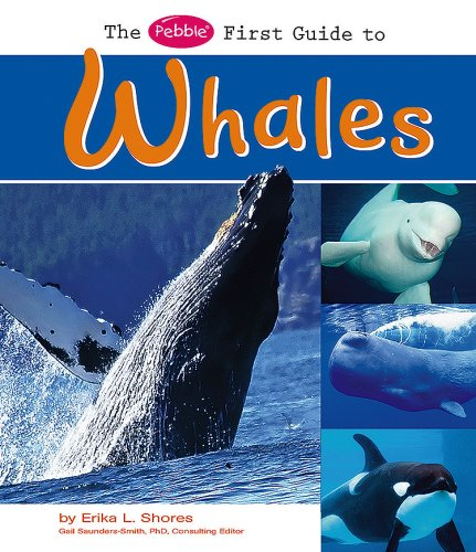9781429617130: The Pebble First Guide to Whales (Pebble First Guides)