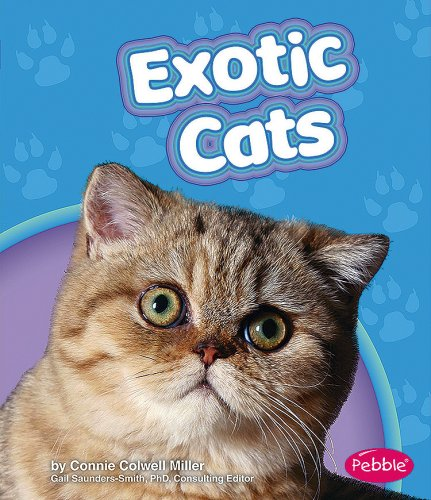 9781429617147: Exotic Cats