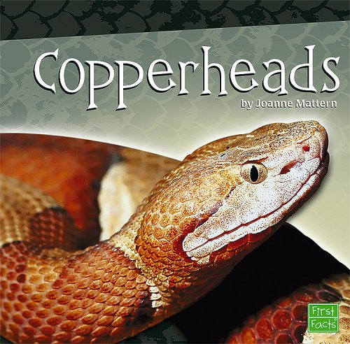 9781429619257: Copperheads (Snakes)