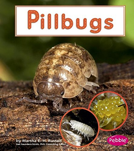 Pillbugs (Watch It Grow): Rustad, Martha E. H.