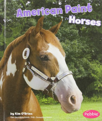 9781429622318: American Paint Horses