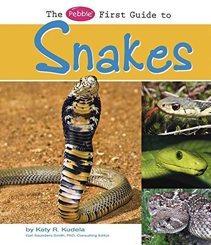 9781429622431: The Pebble First Guide to Snakes (Pebble First Guides)