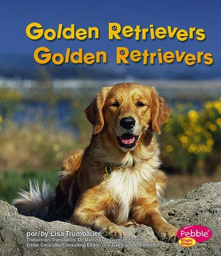 9781429623841: Golden Retrievers/Golden Retrievers (Perritos/Dogs) (Multilingual Edition)