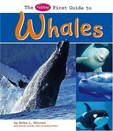 9781429628075: The Pebble First Guide to Whales (Pebble First Guides)