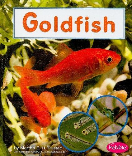 9781429633093: Goldfish