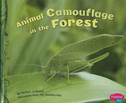 9781429633246: Animal Camouflage in the Forest (Hidden in Nature)