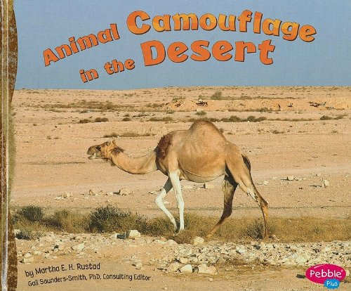 9781429633260: Animal Camouflage in the Desert (Hidden in Nature)