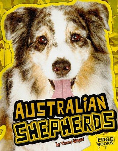 9781429633642: Australian Shepherds (All About Dogs)