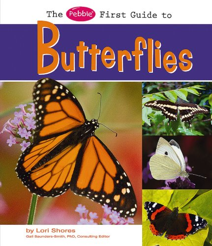 9781429634397: The Pebble First Guide to Butterflies (Pebble First Guides)