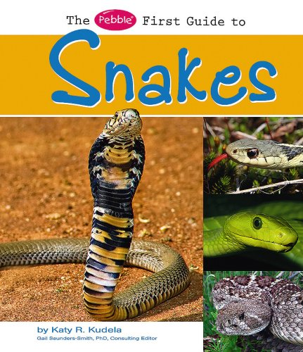 9781429634410: The Pebble First Guide to Snakes (Pebble First Guides)