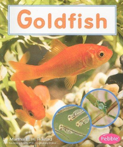 9781429638562: Goldfish