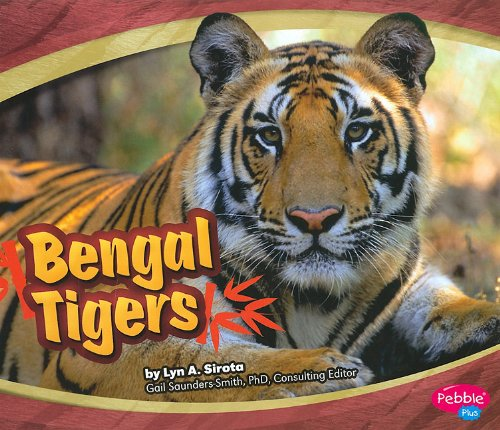 9781429640329: Bengal Tigers (Asian Animals)