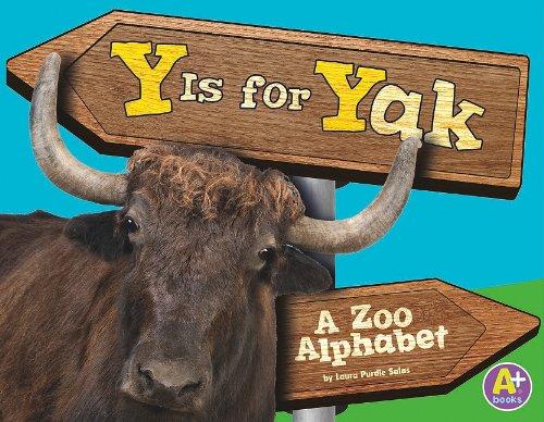 9781429644655: Y Is for Yak: A Zoo Alphabet (Alphabet Fun)