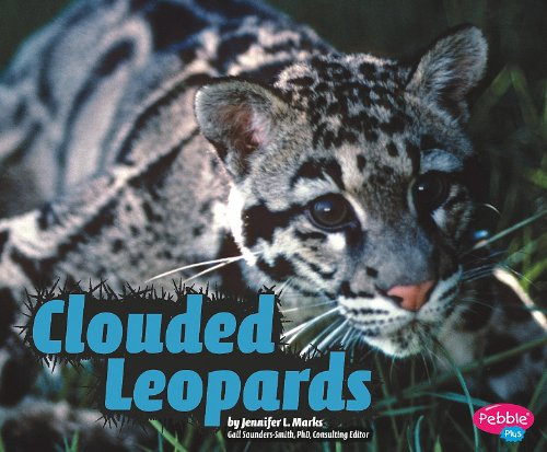 Clouded Leopards (Library Binding): Jennifer L. Marks