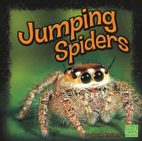 Jumping Spiders: Mattern, Joanne