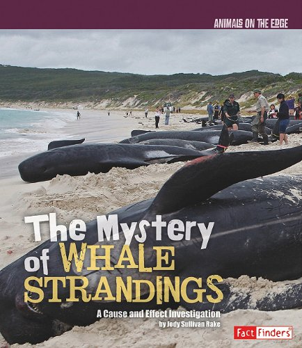 9781429645317: Mystery of Whale Strandings, The (Animals on the Edge)