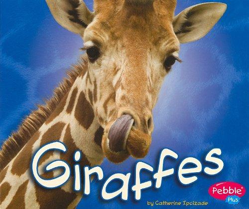 9781429648806: Giraffes (African Animals)