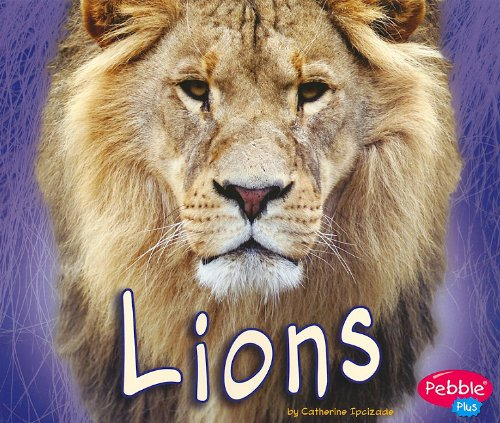 Lions (African Animals): Ipcizade, Catherine