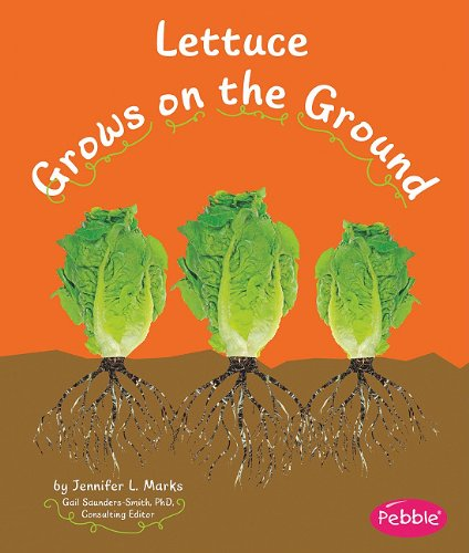 Lettuce Grows on the Ground (How Fruits and Vegetables Grow): Schuh, Mari