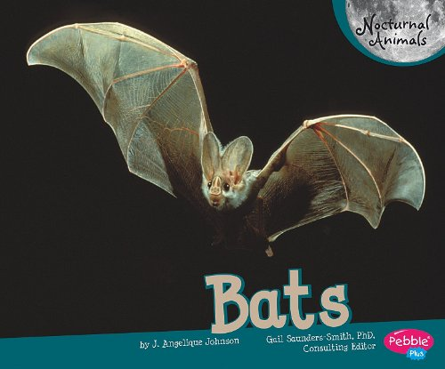 9781429652865: Bats (Nocturnal Animals)
